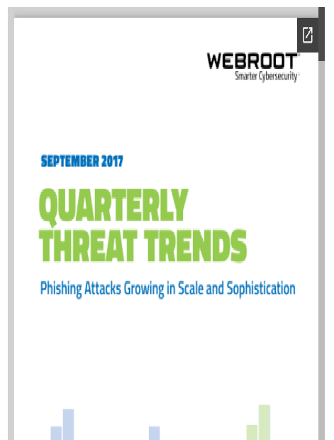 Rapport Webroot Phishing Attack report